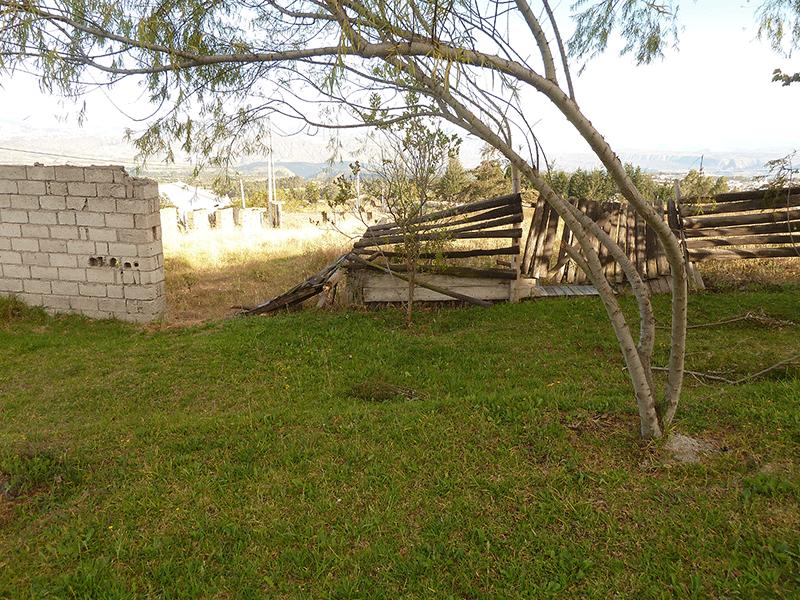 2014-231